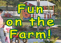 Fun on the Farm!